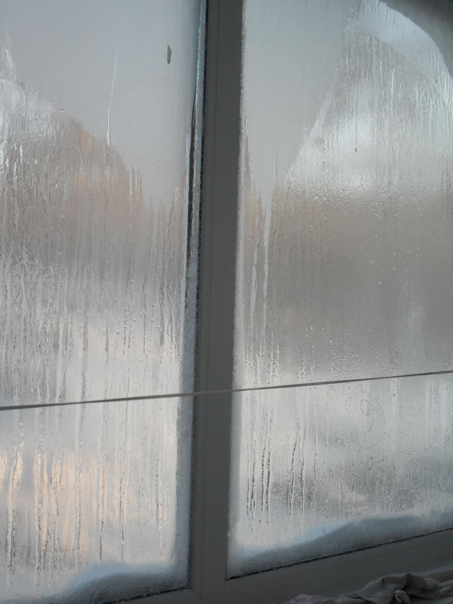 запотевшие окна на застекленной лоджии